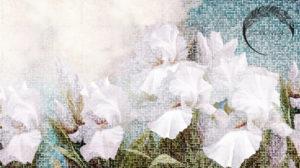 freska_Wezen_Bohowall_nude