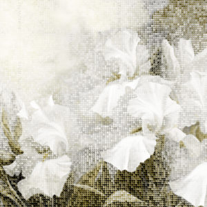 freska_Wezen_Bohowall_sepia